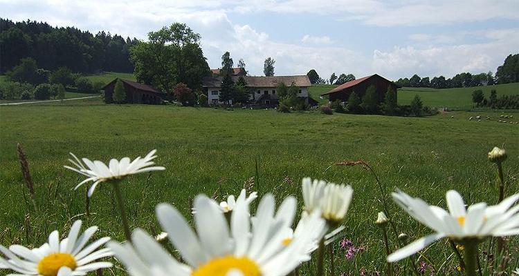 Bauernhof | Urlaub | Einödhof